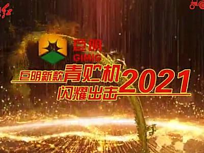 2021新款青貯飼料收獲機介紹視頻