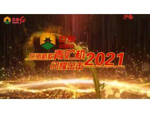 2021新款青贮饲料收获机介绍视频