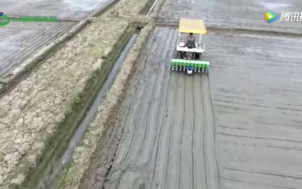 世達爾水稻穴直播機作業視頻