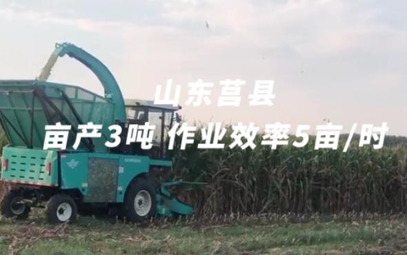 倍托H7山東莒縣作業視頻