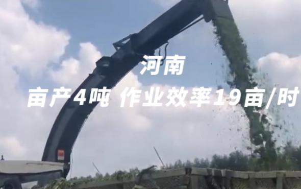 倍托H13河南作業視頻