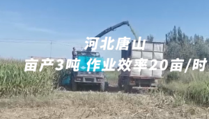 倍托H13河北唐山作業視頻