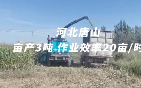 倍托H13河北唐山作业视频