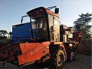 麦赛福格森4YZ-4玉米收割机