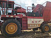 春雨玉米收获机