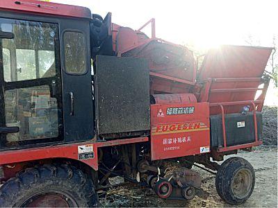 洛阳福格森4YZ-3F自走式玉米收割机