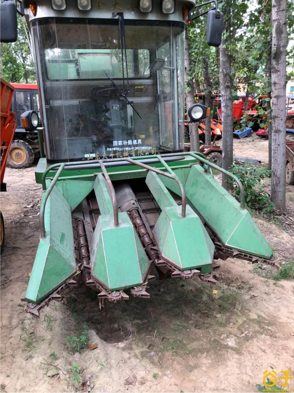 金大丰4YZP-3玉米收获机