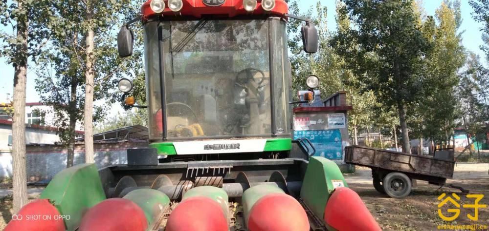 洛阳中收4YZ-4F自走式玉米收获机