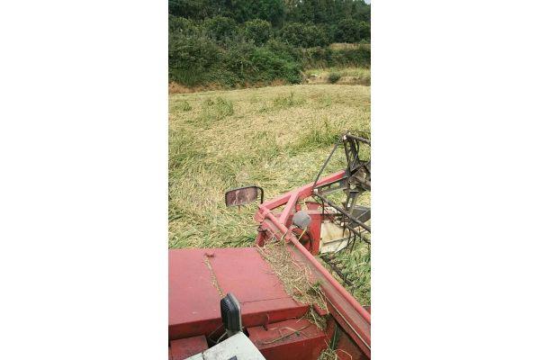 雷沃谷神RG40(4LZ-4G1)型水稻收割机