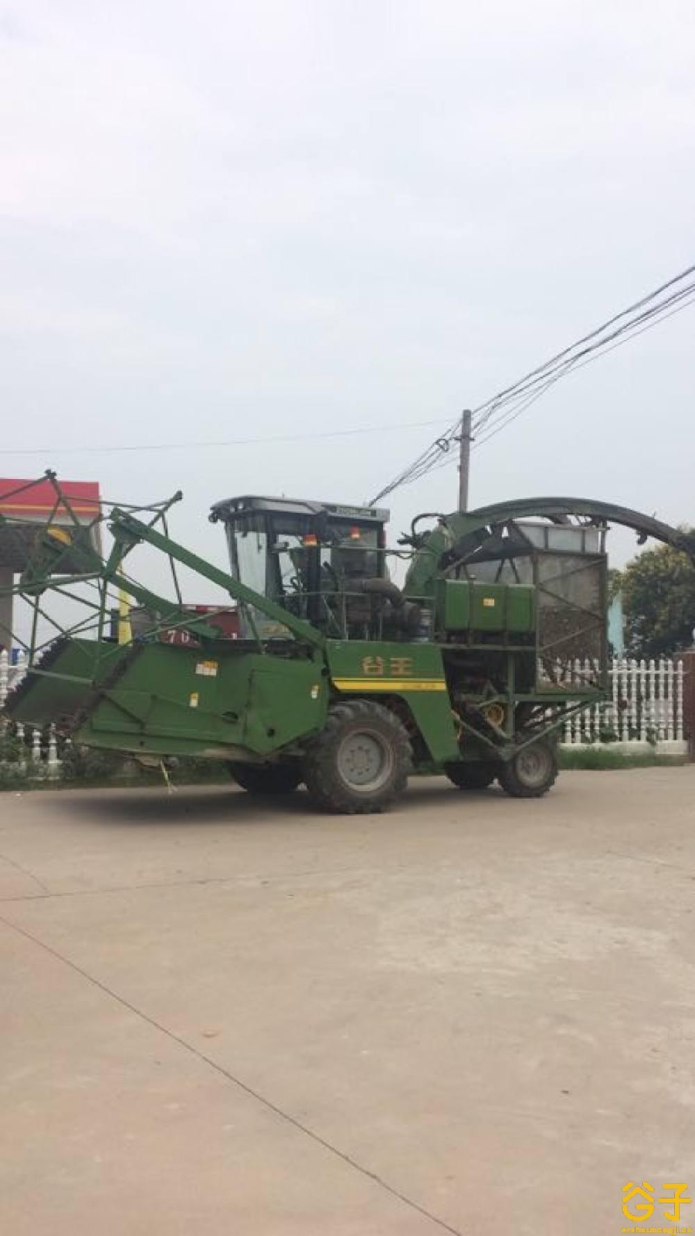 中联谷王FL3000(4QZ-3000)青饲料收获机