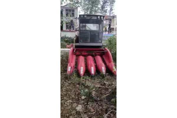 大丰王4YZP-4N玉米联合收割机