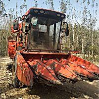 巨明688玉米收割机