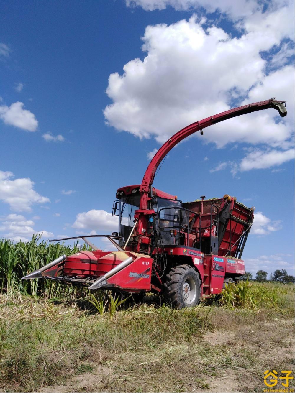 牧神2200玉米青贮机
