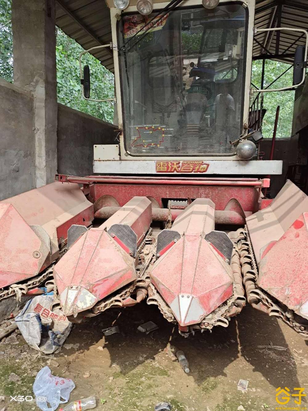 福田雷沃三行玉米收割机