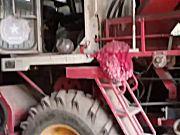 雷沃4行玉米收割机