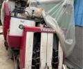 洋马AG600A半喂入收割机